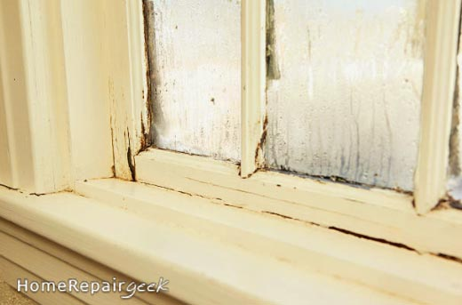 Damage caused by window condensation