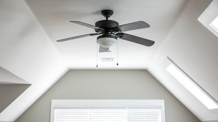 ceiling without access