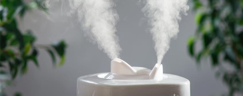 dry-home-need-humidifier
