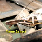 Flame Sensor: A Crucial Part of a Furnace