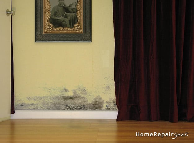 how to check for mold in your house. Black Bedroom Furniture Sets. Home Design Ideas