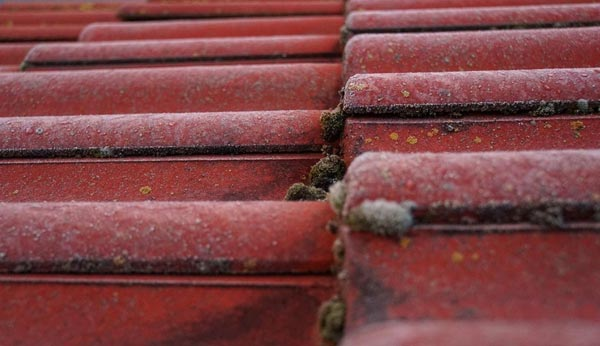 old-red-roof