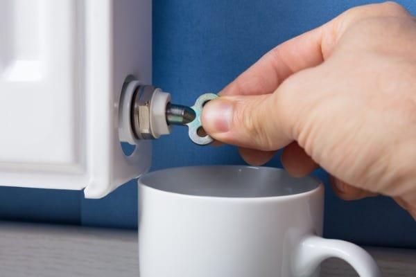 purging boiler radiator