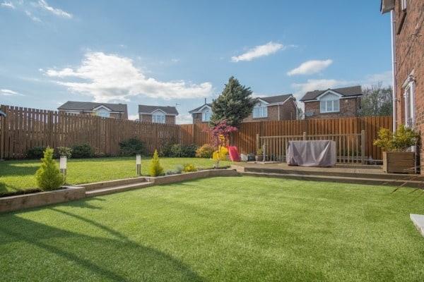 simple and nice backyard design