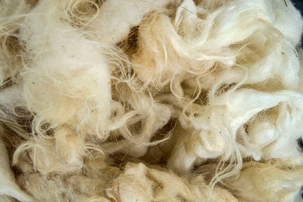 Wool as insulation